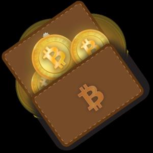 кошелек с биткоинами
